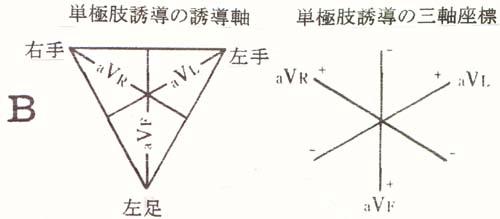 の アイン 三角形 トーベン 【心電図】右軸偏位・左軸偏位とその見方